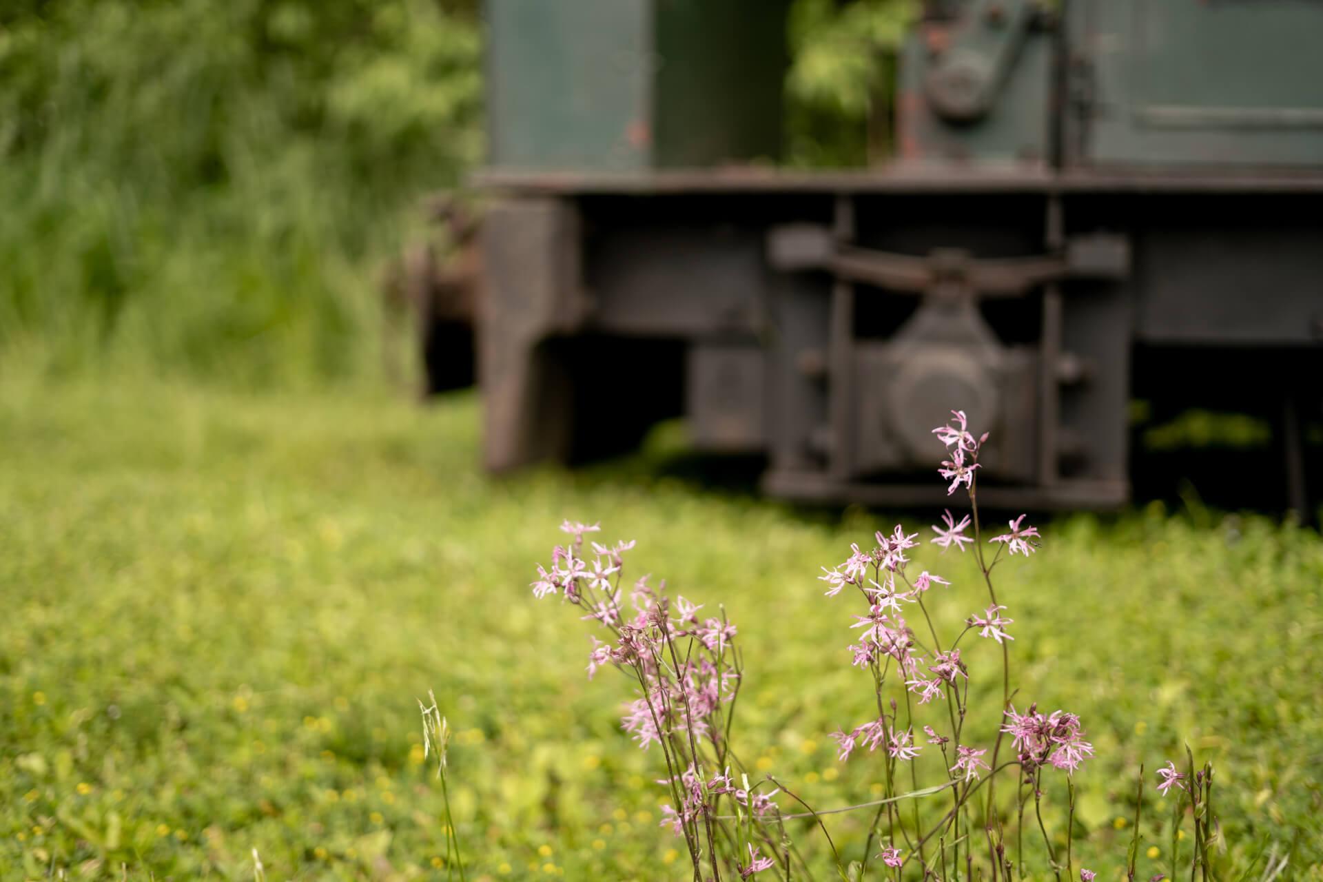 Bahn mit Blumen